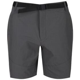 Regatta Highton Shorts Herrer, grå